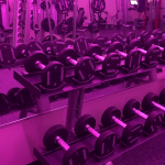 Rack of dumbbells at Club Fitness women's training studio